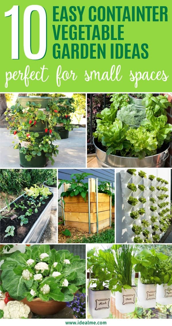 Easy Vegetable Garden Ideas Part - 33: Enjoy Tasty, Homegrown Vegetables On Your Doorstep, Deck, Patio, Balcony, Or