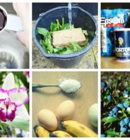 11 Homemade Fertilizer Recipes For Gardeners