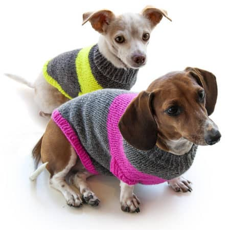 14 Knit Pet Sweater Patterns To Keep Your Furry Friends