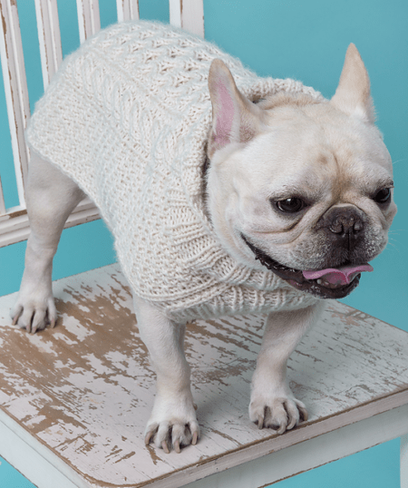 14 Knit Pet Sweater Patterns To Keep Your Furry Friends Warm Ideal Me
