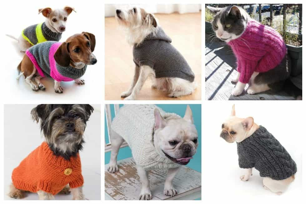 14 Knit Pet Sweater Patterns to Keep Your Furry Friends Warm - Ideal Me