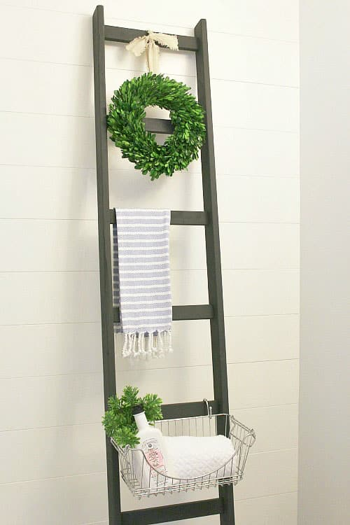 storage ladder - easy storage ideas
