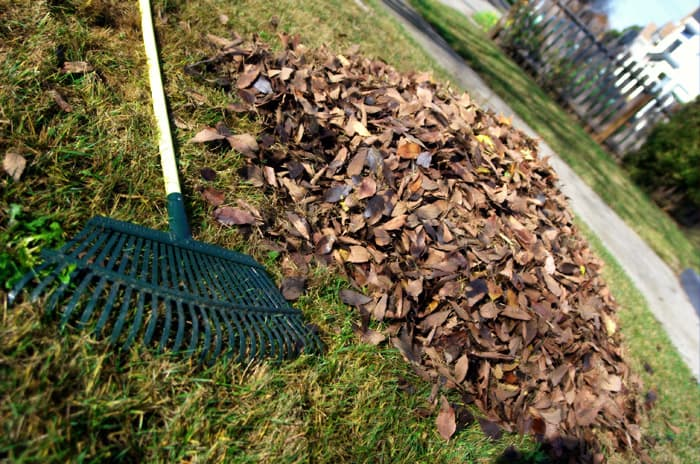 Don't Bag Leaves - fall gardening tips