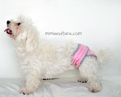 Diaper - sew for your pets
