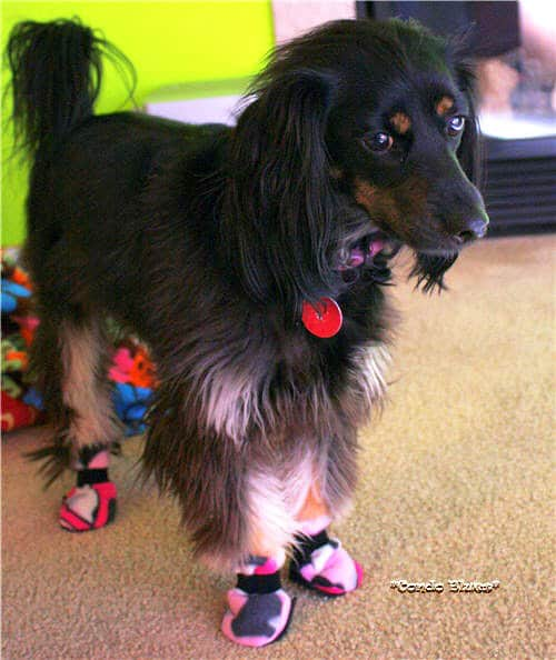 Dog Boots - sew for your pets