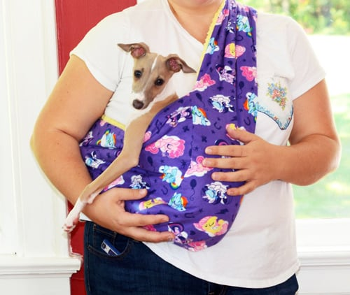 Soft and Cozy Pet Sling - sew for your pets