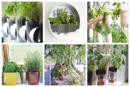 It's easier than you think and we've put together 8 Easy Indoor Vegetable Gardens so that you can grow your own fresh veggies all year round. #indoorvegetablegarden #vegetablegarden #minigarden