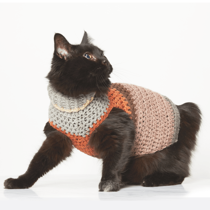 This crochet pet sweater is so cute and has two little holes for your pets front two legs. This free crochet pattern is perfect for beginners. #CrochetPetSweater #CrochetDogSweater #FreeCrchetPattern